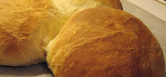 Brødene