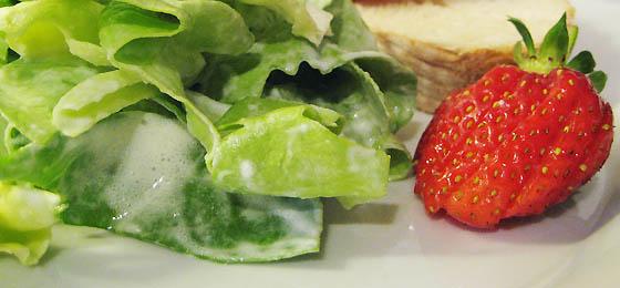 Salaten zoom
