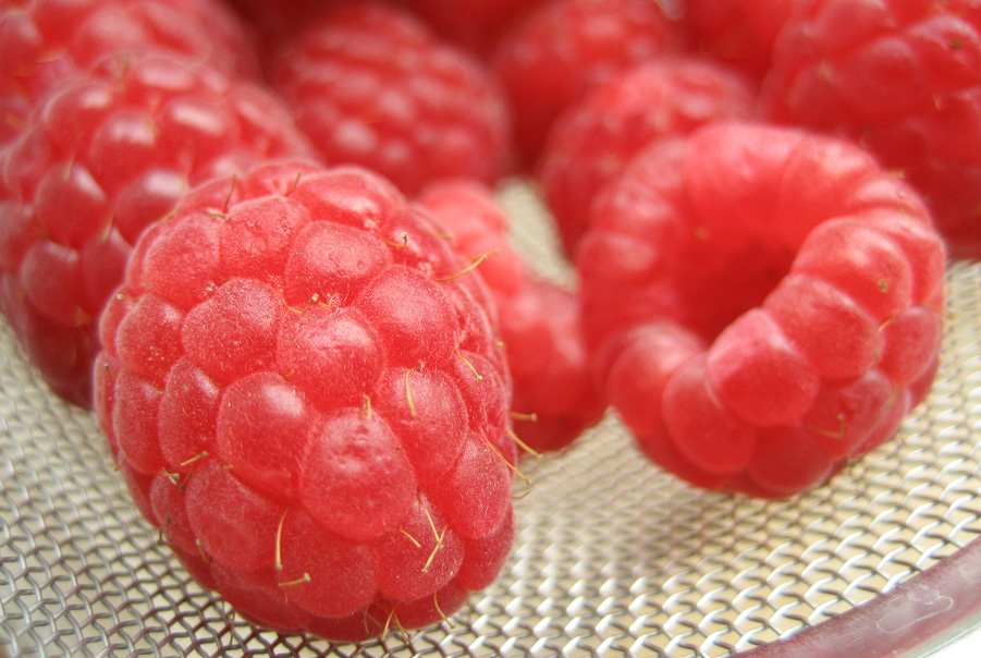 Friske hindbær